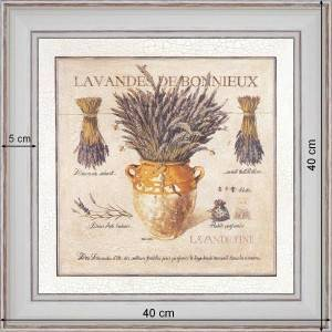 Lavender of Bonnieux - dimension 40 x 40 cm - White