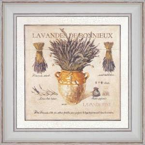 Lavender of Bonnieux