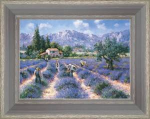 Collection of the lavender