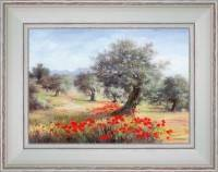 Olive tree Poppies