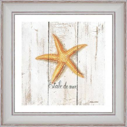 https://tableaux-provence.com/16-73/starfish.jpg