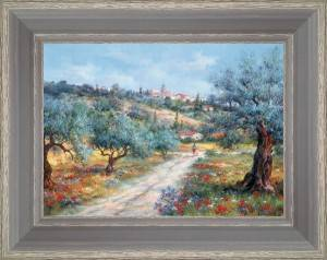Walk in olive trees