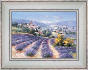 In the lavenders of Haute-Provence