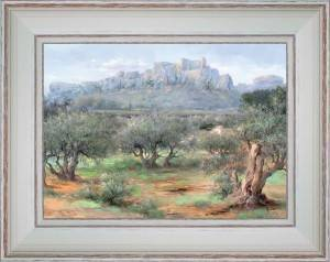 Olive trees of Baux de Provence