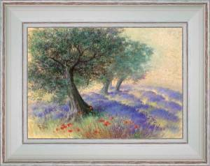 Lavenders under olive trees