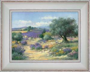 Lavenders and olive trees