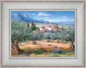 The country house in olive trees