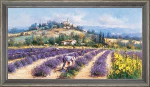 Collectors of lavender