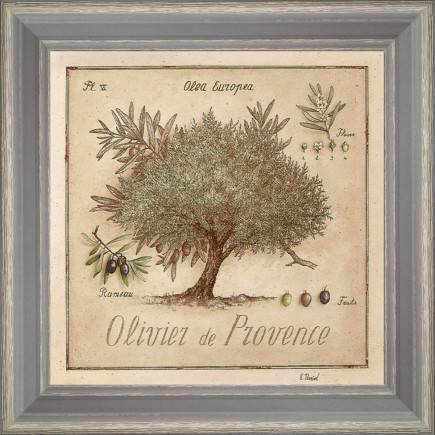 https://tableaux-provence.com/37-2685/olive-tree-of-provence.jpg