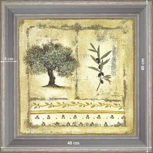 Olive-tree and branch 1 - dimension 40 x 40 cm - Green