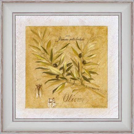http://tableaux-provence.com/243-zoom/country-deco-olive-tree-branch.jpg