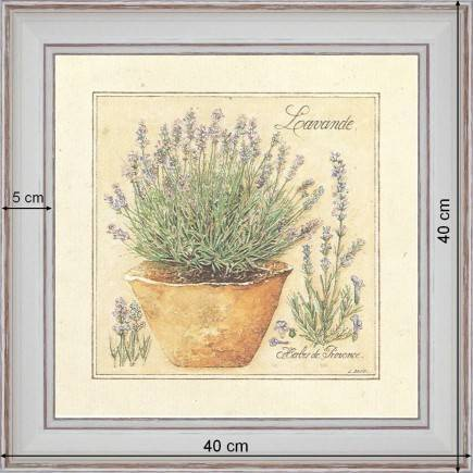 http://tableaux-provence.com/1339-zoom/grass-of-provence-lavender.jpg
