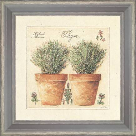 https://tableaux-provence.com/68-272/grass-of-provence-thyme.jpg