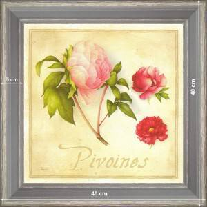 Peonies - dimension 40 x 40 cm - Grey