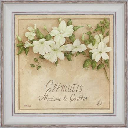 http://tableaux-provence.com/333-zoom/deco-of-charm-clematis-madam-le-coultre.jpg
