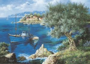 Olivier méditerranéen