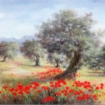 Oliviers coquelicots