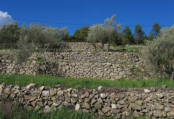 Restanques de Provence
