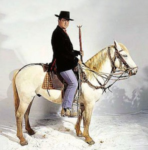 Gardian à cheval