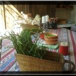 """Les asperges sauvages de """"Mimi du Lac"""""""