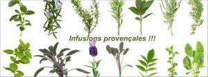 Infusions aux herbes de Provence