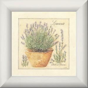 Herbes de Provence, Lavande - Déco cuisine - Tableau de Provence