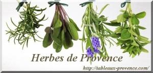 Herbes de Provence en cuisine 1