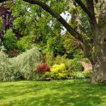 Comment faire de son jardin un havre de paix ?